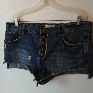 Free People Distressed Style Shorts